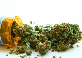 Does Medicinal Cannabis Have A Different Effect On Men And Women?